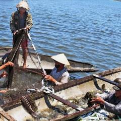 Thừa Thiên Huế: Phát triển sản phẩm thủy sản đặc thù
