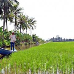 Để thành công nông dân không thể đơn độc