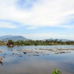 Ồ ạt thả phao, bè nhử vẹm trên sông ở Khánh Hòa
