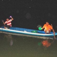 Long An: Trắng đêm giải cứu cá tra giống