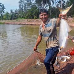 Lãi cả tỷ đồng nhờ nuôi loài cá đặc sản miệng rộng