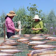 Khởi nghiệp với sản phẩm cá khô