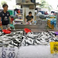 Chính phủ Malaysia sẽ cấm xuất khẩu một số loại tôm cá
