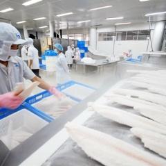 Một số kiến nghị về xuất khẩu cá tra sang thị trường Trung Quốc