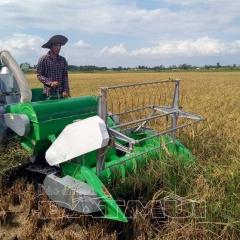 Cà Mau đã có máy gặt đầu tiên cho vùng lúa - tôm