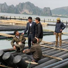 Đột phá của ngành thủy sản Quảng Ninh