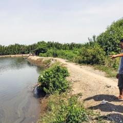 Bà Rịa - Vũng Tàu: Vùng nuôi thủy sản thiếu nước do bị chặn dòng