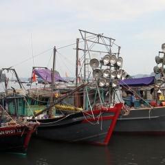 """Hải sản cạn kiệt dần, VN tính đến khả năng """"cấm biển"""""""