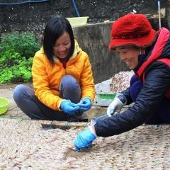Nghệ An rộn ràng chế biến hải sản khô cho thị trường Tết