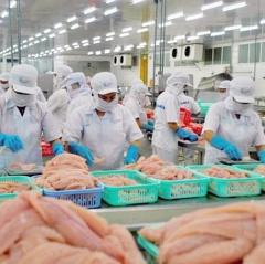3 lý do khiến cá tra Việt Nam xuất khẩu sang Mỹ tăng vọt