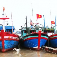 Quy định mới về chính sách phát triển thủy sản