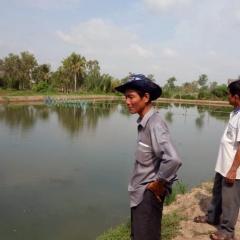 Ao dinh dưỡng - Hệ thống mới giảm chi phí nuôi tôm cá
