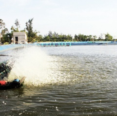Hà Tĩnh: Nhiều chính sách hỗ trợ nuôi tôm trên cát