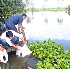 Cấp thiết bảo vệ nguồn lợi thủy sản Quảng Nam