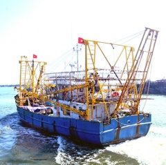 Bất cập bảo hiểm tàu công suất lớn