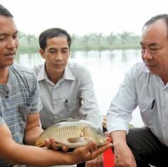Đột phá ngành thủy sản Thái Bình