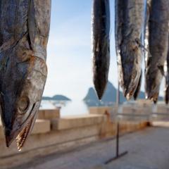 Xóa bỏ thẻ vàng đã cứu ngành thủy sản Thái Lan