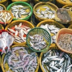 Sản lượng thủy sản Trung Quốc giảm trong năm 2018