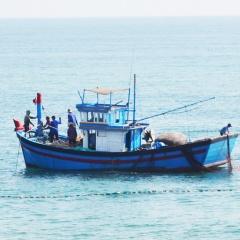 """Phú Yên: Khẩn trương khắc phục """"thẻ vàng"""" của Ủy ban châu Âu"""