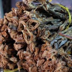 Khô cá khoai Cà Mau trúng mùa, được giá