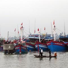 Làng biển Tam Quang qua mùa đánh bắt...