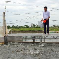 Hà Nội: Nuôi trồng thủy sản vào vụ mới