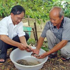 Khung lịch nuôi trồng thủy sản Hậu Giang năm 2019