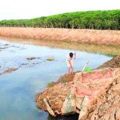 Chủ động điều kiện để nuôi trồng thủy sản vụ xuân hè