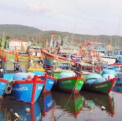Bãi bỏ 14 thủ tục hành chính trong lĩnh vực thủy sản
