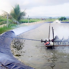 Bảo vệ nguồn lợi: Hỗ trợ chuyển đổi nghề cho ngư dân