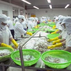 Bất cập xuất khẩu thủy sản: Một lô hàng, cần 2 giấy chứng nhận