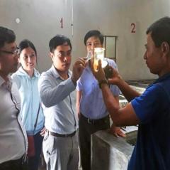 Nghệ An: Sản xuất nghêu giống hiệu quả cao