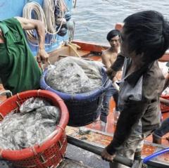 Phòng ngừa ngộ độc khí hầm cá