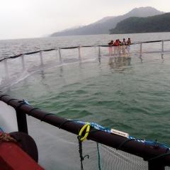 Nở rộ các mô hình nuôi trồng thủy sản bền vững