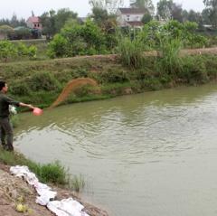 Biến đồng đất chua phèn thành vùng nuôi thủy sản tiềm năng