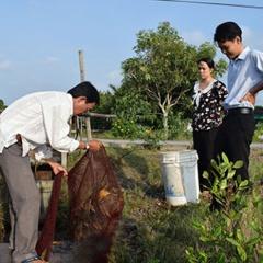 Hiệu quả nuôi tôm sú theo công nghệ Biofloc
