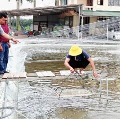 Doanh nghiệp góp phần nâng cao giá trị sản xuất thủy sản