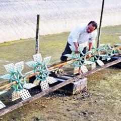 Thạch Hà đầu tư hàng trăm tỷ đồng nuôi 1.020 ha thủy sản