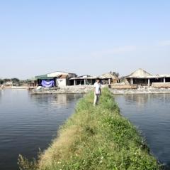 Hoằng Hóa nhiều nông dân giàu lên từ nuôi trồng thủy sản