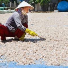 """Tái chế phụ phẩm thủy sản: Khoảng trống """"tỷ đô"""""""