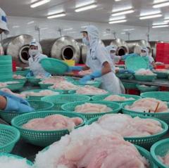 Kết quả cuối cùng mức thuế chống phá giá với cá tra Việt Nam tăng