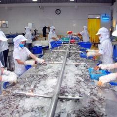 Ứng dụng công nghệ lĩnh vực thủy sản: Liệu cơm, gắp mắm