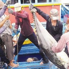 Hoá giải thách thức cho xuất khẩu hải sản