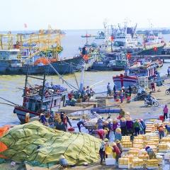 Giám sát tàu cá bằng công nghệ vệ tinh