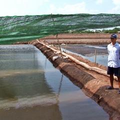 Lưới che nắng - Giải pháp nuôi artemia mùa nóng