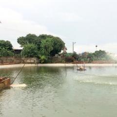 Thanh Miện mở rộng các vùng nuôi thủy sản tập trung