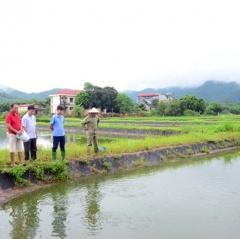 Tuyên Quang: Phát triển thủy sản bền vững