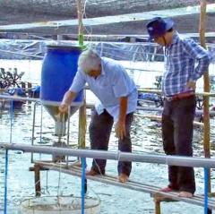 Sóc Trăng: Diện tích nuôi thủy sản bị thiệt hại tăng