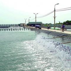 Thanh Hóa: Phát triển nuôi thâm canh thủy sản chủ lực