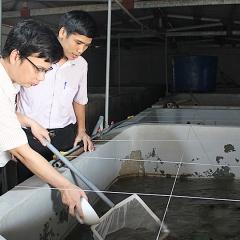 Đảm bảo chất lượng giống cho vụ nuôi thủy sản mới